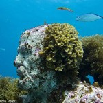 the underwater art-world of Jason de Caires Taylor
